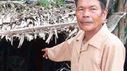 Ngôi làng 100 người cùng thành tỷ phú sau một đêm ở An Giang