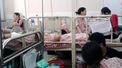 """Nô nức săn """"rồng con"""": Bệnh viện quá tải trầm trọng"""