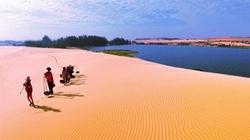 Về Bàu Cát, nơi sen nở trên sa mạc