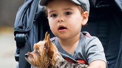 Flynn ôm chặt cún cưng, tươi rói bên mẹ