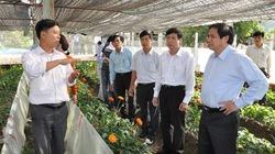 Quảng Ninh:  Chọn 3 huyện làm điểm về tam nông
