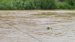 Lào Cai: Sông Hồng xuất hiện lũ khá cao