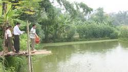 Hỗ trợ các tỉnh Nam Lào  xây dựng kinh tế VAC