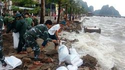 Hàng nghìn bao cát chặn đứng sóng dữ phá kè Hạ Long
