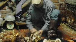Về chất lượng vật tư, nông sản: Chưa quản lý được  các cơ sở huyện, xã