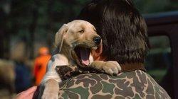 SỐC: Ngáp lây từ người sang… chó