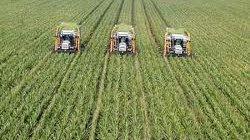 Lâm Đồng phát triển nông nghiệp CNC: Đề nghị Israel hỗ trợ đào tạo nhân lực