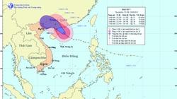 Việt Nam thoát ảnh hưởng của bão số 7