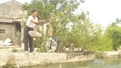 Thêm nguồn lực cho làng nuôi cá