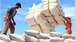Lo ngại xuất khẩu gạo chậm cuối năm