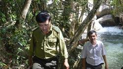 Làm thủy điện trong VQG: Chủ rừng chống chọi trong đơn độc