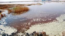 20 triệu người Trung Quốc có nguy cơ nhiễm độc