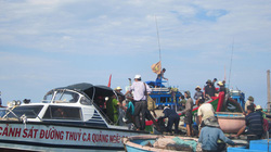 Bỏ biển, ngư dân sốt xình xịch đi săn cổ vật