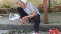 Phật tử tố sư cô hành hung bà vãi trong chùa