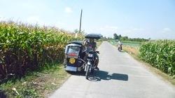 Chuyện về nhà nông Philippines