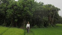 Đồng lòng giữ rừng Nà