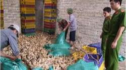 Bắt vụ chở 30.000 con gà giống Trung Quốc
