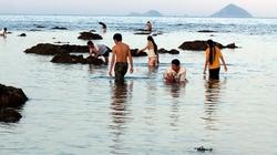 Kỷ niệm lần đi mò ốc biển