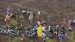 Quảng Nam: Dân đội mưa phản đối nhổ cây trồng rừng
