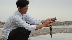 Làm muối thích ứng biến   đổi khí hậu