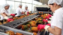 Đẩy mạnh xuất khẩu rau, quả vào Indonesia