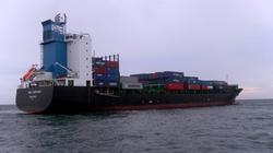 Vụ tàu hàng đâm tàu cá Việt: Mở rộng tìm kiếm