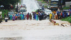 Tây Nguyên: Hàng chục nhà sập, đường sá sạt lở nặng