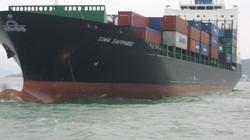 Đã thu thập chứng cứ vụ tàu Singapore đâm tàu Việt Nam