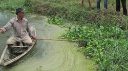 Nhà máy tinh bột sắn xả thải độc: Sai phạm nghiêm trọng, chỉ phạt hành chính (!?)