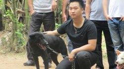 Kỳ công săn giống chó cổ xưa nhất Việt Nam