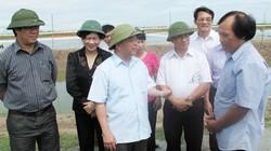 Chủ tịch T.Ư Hội NDVN Nguyễn Quốc Cường: Liên kết là giải pháp khả thi cho tiêu thụ nông sản