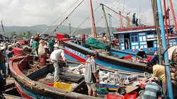 Tập trung bố trí vốn hỗ trợ ngư dân