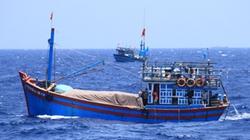 Trung Quốc xác nhận bắt tàu cá cùng 6 ngư dân Việt