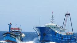 Hoàng Sa, 6.7: Trung Quốc giảm số lượng tàu cá vỏ sắt quanh giàn khoan