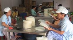 Phát triển kinh tế tập thể ở TP.Hồ Chí Minh: Hỗ trợ mạnh cho HTX nông nghiệp