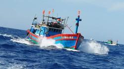HĐND TP.Đà Nẵng thống nhất thông qua Nghị quyết phản đối Trung Quốc