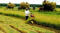 Nông thôn mới và chuyện lạm thu: Hãy nghe tiếng giọt mồ hôi của dân