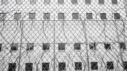 Bi hài: Vào tù thăm con bị mắc kẹt luôn trong phòng biệt giam
