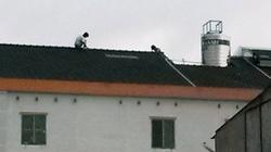 Trộm bất thành, leo lên nóc nhà 4 tầng đòi... tự tử