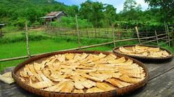 Măng rừng Trường Sơn - Đặc sản ra tiền mùa nhàn rỗi