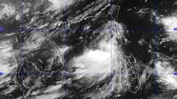 Bão số Rammasun tấn công dữ dội biển Đông