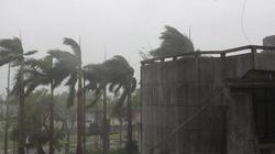 Bão Thần Sấm quật đổ 3 cột điện, 9 nhà tốc mái ở Móng Cái