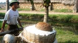 Diêm dân chỉ thu 8.000 đồng/ngày: Nguy cơ xóa sổ nghề muối ở Thanh Hóa