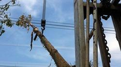 Hà Nội: Xe cẩu gây sự cố mất điện trên diện rộng