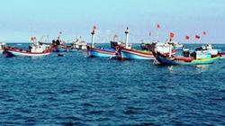 18.000 tỷ đồng cho vay phát triển thủy sản