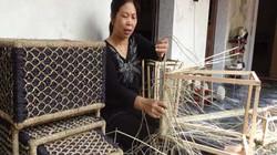 Người phụ nữ đưa... bèo Việt đi Nga, Mỹ, Nhật
