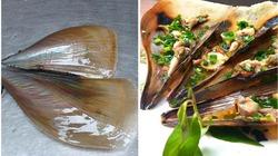 Sò mai - đặc sản đem sung túc cho ngư dân
