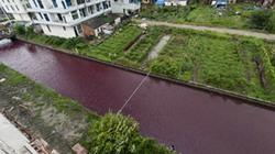 Sông Trung Quốc bất ngờ chuyển màu máu chỉ trong một đêm