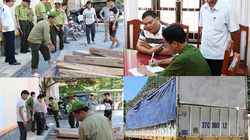 Vụ công an vây bắt kiểm lâm ở Thanh Hóa: Ai hối lộ 100 triệu đồng?