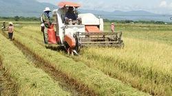 Ninh Thuận: Tổ chức Hội thi Nhà nông đua tài